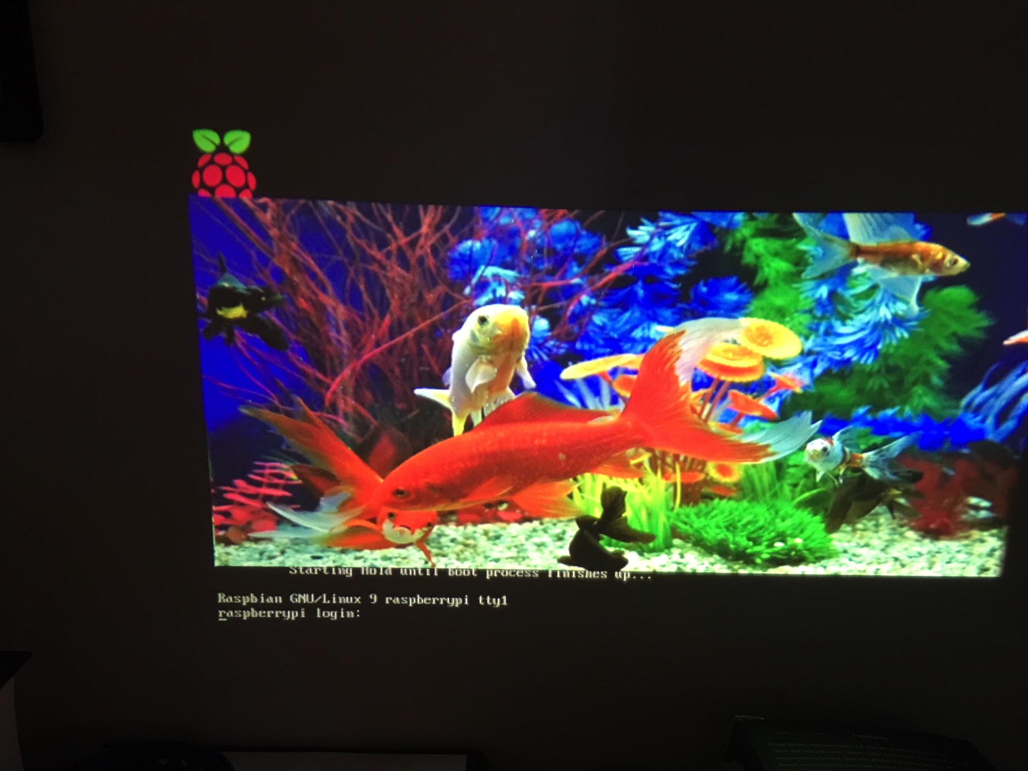 Resolved] Linux/DLPDLCR2000EVM: Integration of Raspberry Pi Video