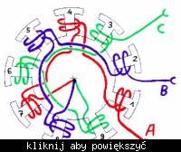 hall sensor arrangement around bldc motor motor drivers forum  12 pole brushless dc motor winding diagram wiring